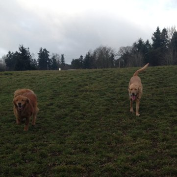 The Boys Max & Riley