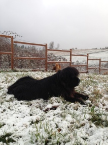 Ms Mag's Loves the Snow!!