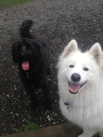 Benny & Sierra