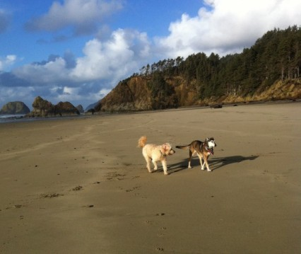Cannon Beach 2013