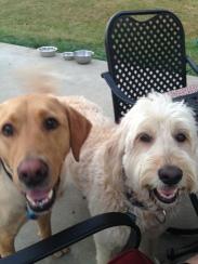 Riley & Maui