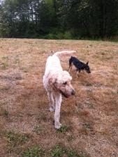 Miles & Baxter
