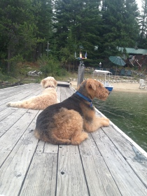 Hanging out on the dock with Lexi