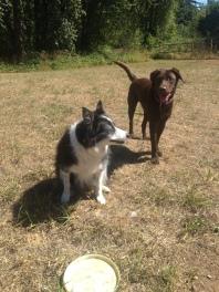 Sophie & Otis