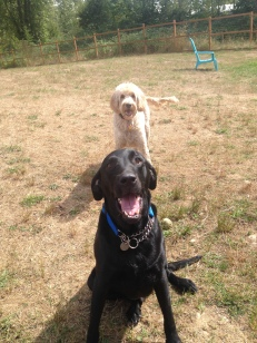 Riley & Zoie